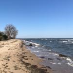 Ein Besuch der Kreidefelsen auf Rügen